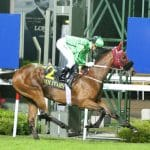 Military Attack wins the Gr 1 SAI Cup