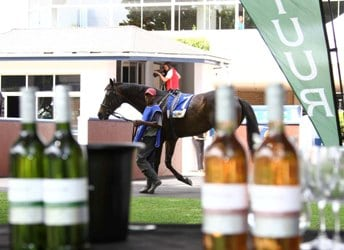 Wine & Horses at the Races