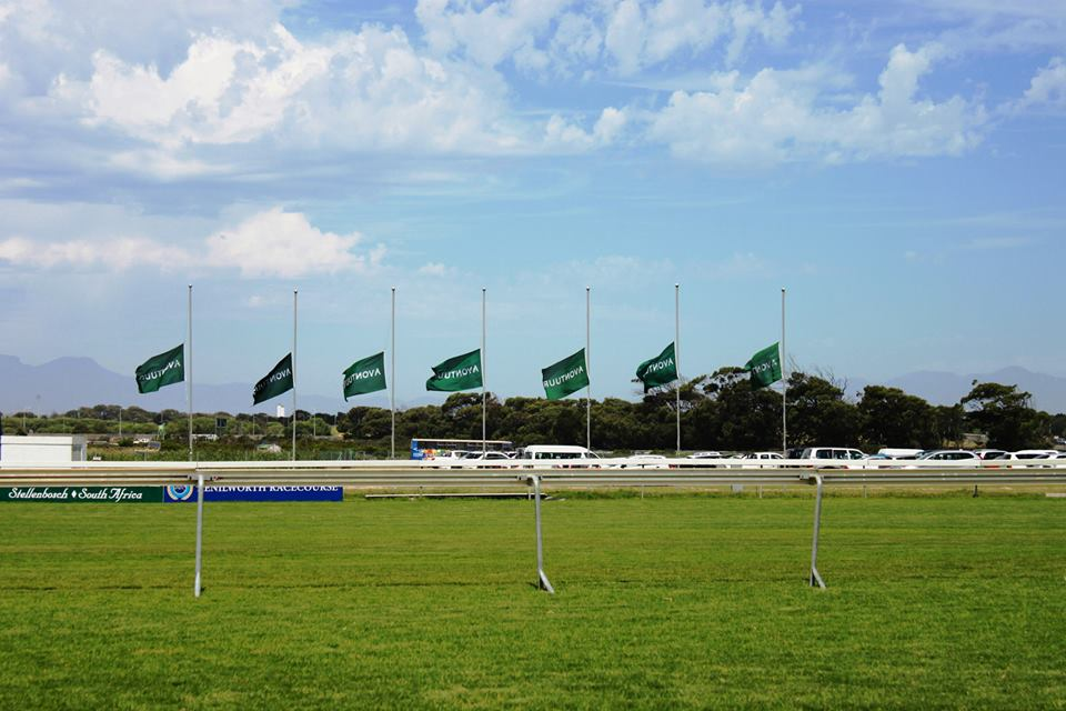 Flags at half mast on course