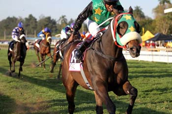 Normanz wins the Gr1 Golden Horse Sprint in May 2014
