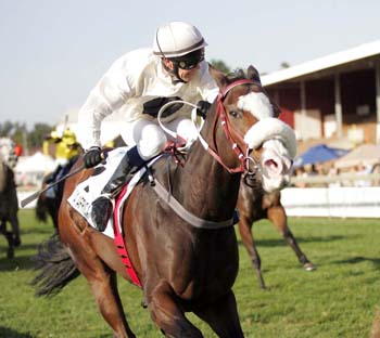 Via Afrika wins the Gr 1 SA Fillies Sprint in 2014