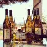 Pinot Noir/Chardonnay 2015